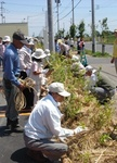 20070708木を植えたよ.JPG